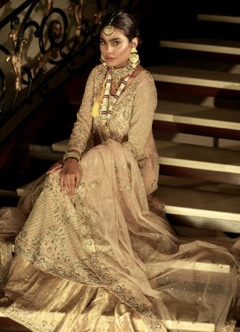 Pakistani brides dresses